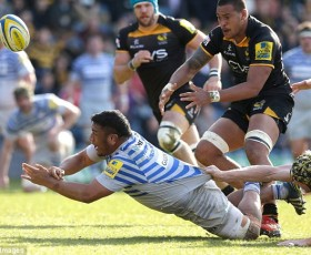 Saracens Take The Sting Out Of Wasps