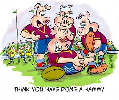 Rugby Cartoonist Wanted
